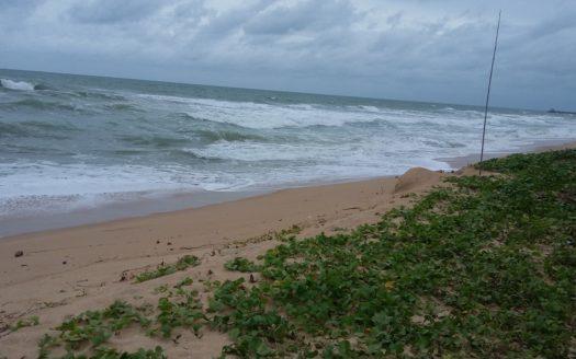 3.33 rai beach _4